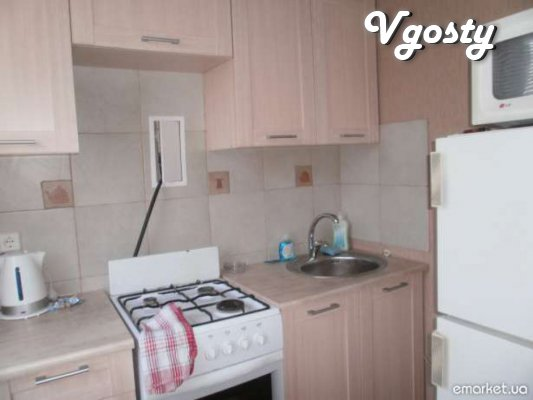 Apartment in the central part of the city, near the metro - Apartments for daily rent from owners - Vgosty