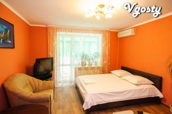 One room luxury apartment by the day - Apartments for daily rent from owners - Vgosty