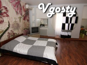 1-room studio with a sofa and bed - Apartments for daily rent from owners - Vgosty