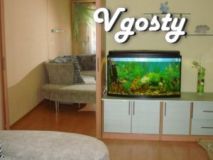 apartment on chsy, night, day - Apartments for daily rent from owners - Vgosty