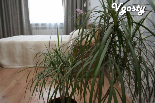Guest House Travel House Kerch - Apartments for daily rent from owners - Vgosty