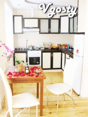 Daily ul.Sakharova - diz.єvroremont center, new furniture, appliances! - Apartments for daily rent from owners - Vgosty