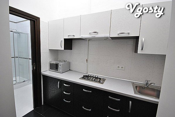 Luxury apartment in the heart of the city! - Apartments for daily rent from owners - Vgosty