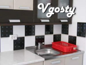 Inexpensive apartment opposite the thermal pool in Beregovo - Apartments for daily rent from owners - Vgosty