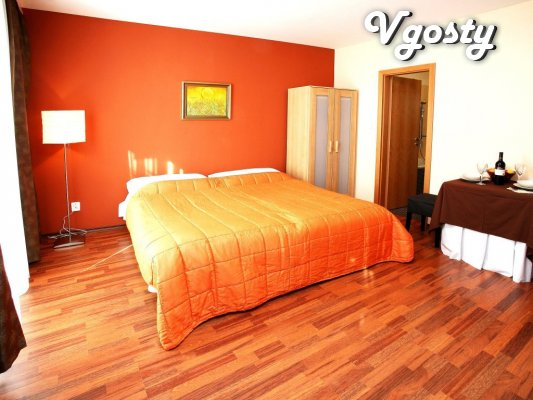 Terracotta studio apartment in the city center for 3 persons - Apartments for daily rent from owners - Vgosty