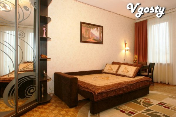 Comfortable apartment in the center - Apartments for daily rent from owners - Vgosty
