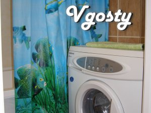 Rent one 3 room. square - Apartments for daily rent from owners - Vgosty