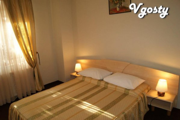 Flat Situated in a historic center of the city - Apartments for daily rent from owners - Vgosty