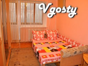Cheap studio apartment in the center - Apartments for daily rent from owners - Vgosty
