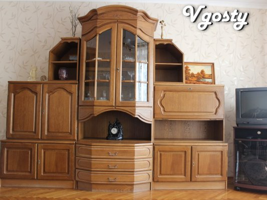Comfortable apartment in the city center - Apartments for daily rent from owners - Vgosty