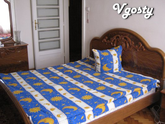 2 BR. apartment in the historic center of the city. Euro repair, inter - Apartments for daily rent from owners - Vgosty