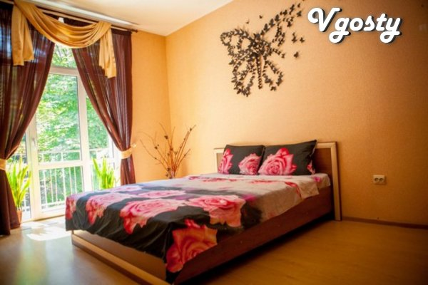 Center. Cathedral. Euro. Wi-Fi. - Apartments for daily rent from owners - Vgosty