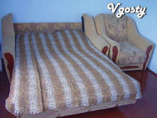 its cozy 1-bedroom apartment - Apartments for daily rent from owners - Vgosty