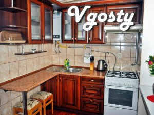 3-room apartment in the center - Apartments for daily rent from owners - Vgosty