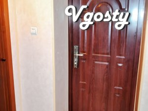 Center, 1 room apartment - Apartments for daily rent from owners - Vgosty