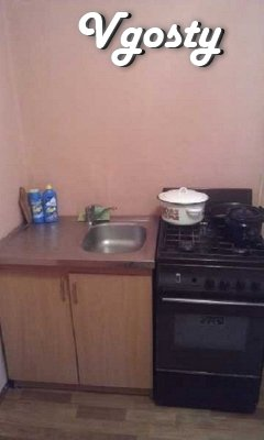 Comfortable apartment in the heart of the city - Apartments for daily rent from owners - Vgosty