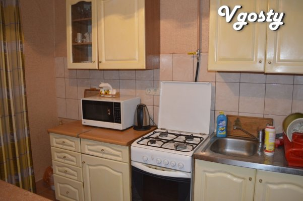 Cozy apartment, Epicenter district - Apartments for daily rent from owners - Vgosty