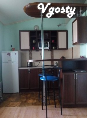 NEW APARTMENTS IN THE CENTER! ALL CONDITIONS! - Apartments for daily rent from owners - Vgosty