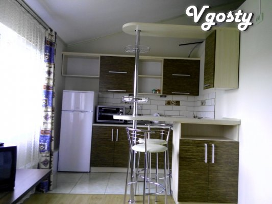 Comfortable new apartment in the center. All conditions - Apartments for daily rent from owners - Vgosty