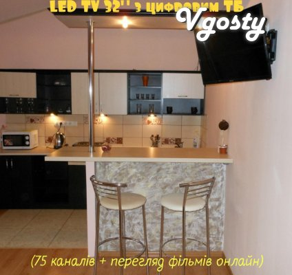 NEW APARTMENT IN THE CENTER WITH ALL CONDITIONS - Apartments for daily rent from owners - Vgosty