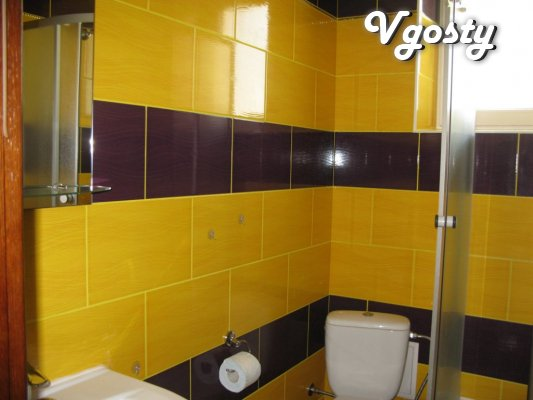 Rent in Truskavets near the center Kozijavkin - Apartments for daily rent from owners - Vgosty