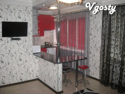 VIP - center. - Apartments for daily rent from owners - Vgosty