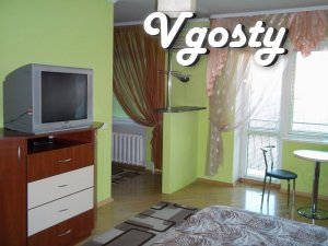 VIP - city center. - Apartments for daily rent from owners - Vgosty