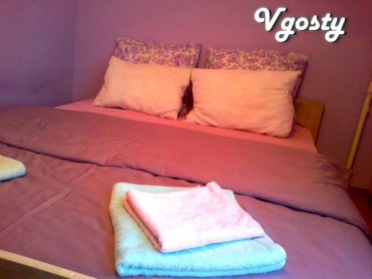 2 - k. Apartment in the center! - Apartments for daily rent from owners - Vgosty