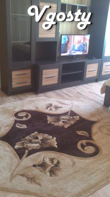 seems 1-bedroom apartment - Apartments for daily rent from owners - Vgosty