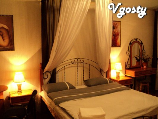 1-room. at night, WiFi, TV, near Silpo - Apartments for daily rent from owners - Vgosty