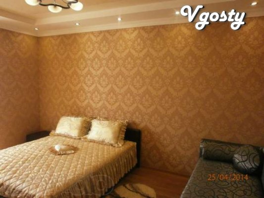 Cozy 1 bedroom apartment c WIFI in the center of Truskavets, to the pu - Apartments for daily rent from owners - Vgosty