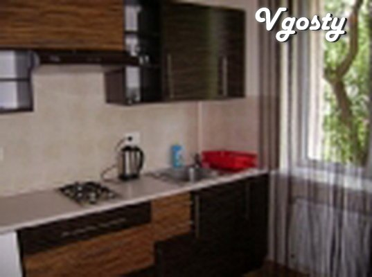 One bedroom apartment 10 minutes to the center of the pump room 7 min  - Apartments for daily rent from owners - Vgosty