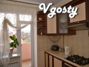 Cozy apartment with WIFI 5 minutes. to the pump room - Apartments for daily rent from owners - Vgosty