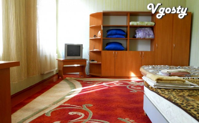 1-bedroom apartment in the center of the city - Apartments for daily rent from owners - Vgosty