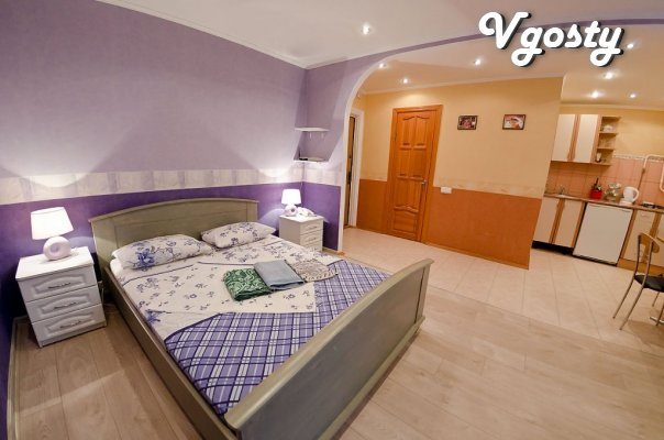 One-room studio in the center of Kiev for daily living - Apartments for daily rent from owners - Vgosty
