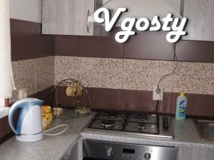 Komfortabalna apartment in Ivano-Frankivsk from owner - Apartments for daily rent from owners - Vgosty