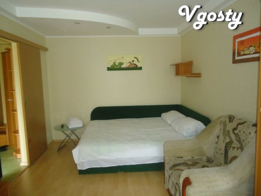 Comfortable apartment! Centre - Apartments for daily rent from owners - Vgosty