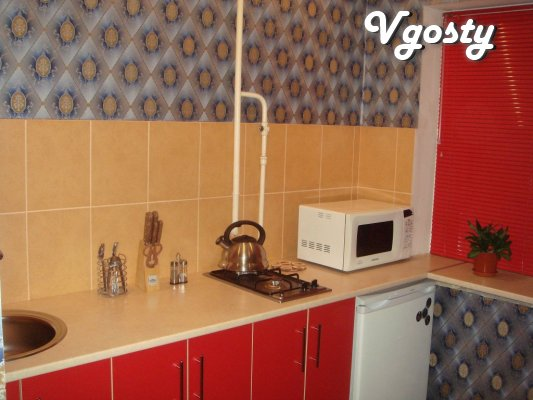 The center, repair, clean, internet, without intermediaries - Apartments for daily rent from owners - Vgosty