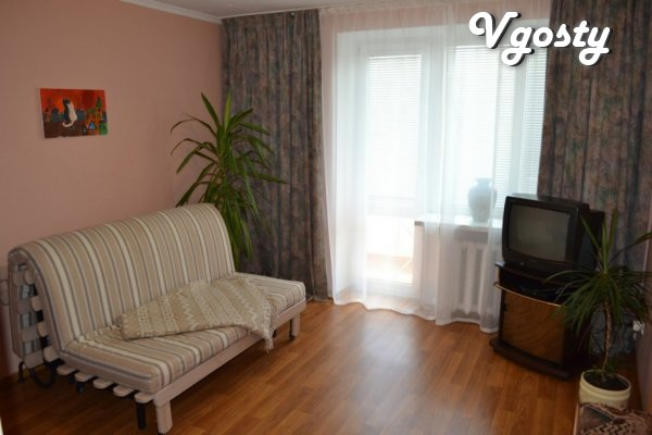 Cozy apartment in the center of the city - Apartments for daily rent from owners - Vgosty