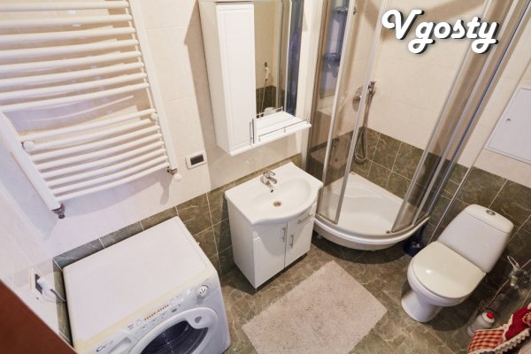 One room apartment behind the Opera House - Apartments for daily rent from owners - Vgosty