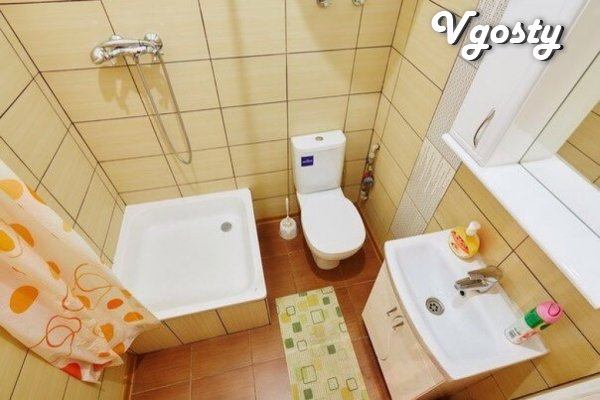 Однокомнатная квартира возле Площади Рынок - Apartments for daily rent from owners - Vgosty