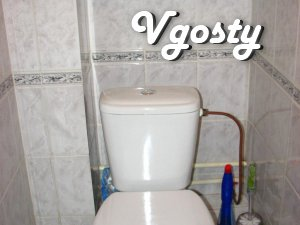 For short term rent 1-N KVARTIRUV Boryspil - Apartments for daily rent from owners - Vgosty