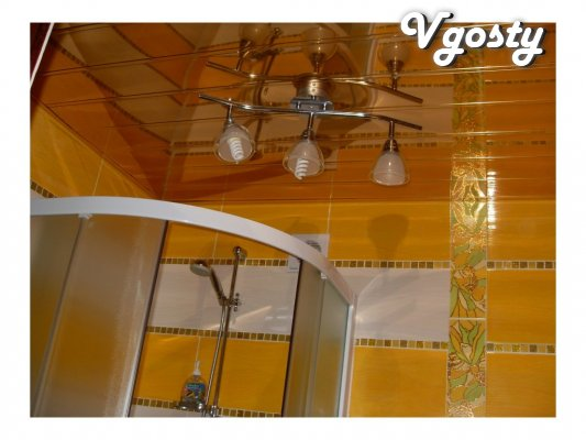 Pirogov in Feride Plaza Center - Apartments for daily rent from owners - Vgosty