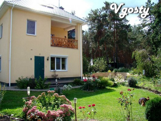 House- villa in a pine forest - Apartments for daily rent from owners - Vgosty